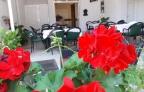 restoran Novak (2)