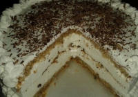 Torta slična Havani